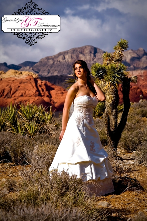 Trash-The-Dress-Las-Vegas-photos