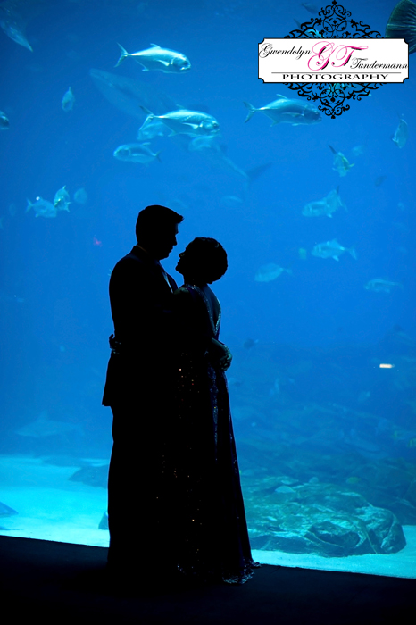 Wedding-Photos-Georgia-Aquarium-07.jpg