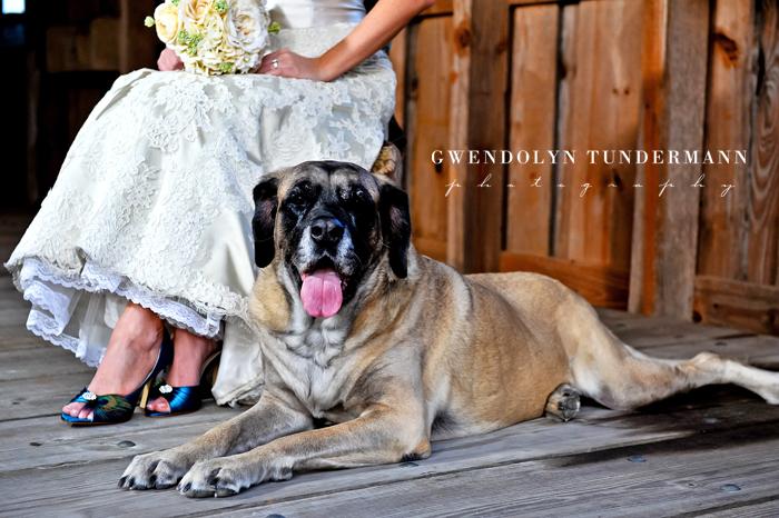 Keeler-Property-Wedding-Photos-Bridal-07.JPG