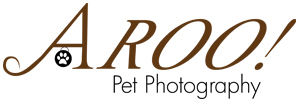 San-Diego-Pet-Photographers