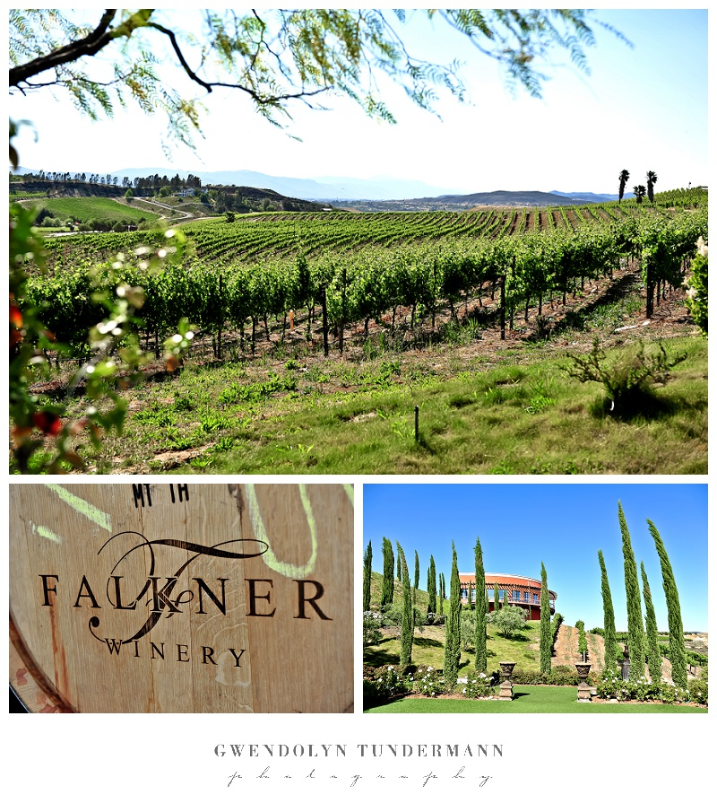 Falkner-Winery-Wedding-Photos-008