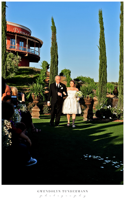Falkner-Winery-Wedding-Photos-009