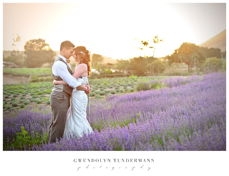 Lavender-Field-Wedding-Engagement-Photos-20